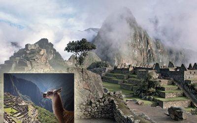 Visitar el Machu Picchu en Perú